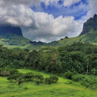 inland opunohu valley zwei wollen meer moorea